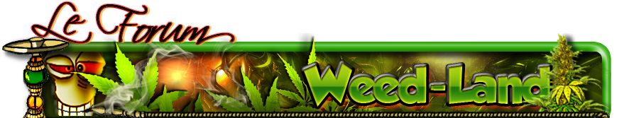 Forum Weed-Land